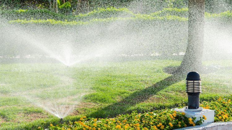 How To Adjust Rainbird Sprinkler Head